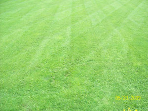 lawn mowing waterville maine
